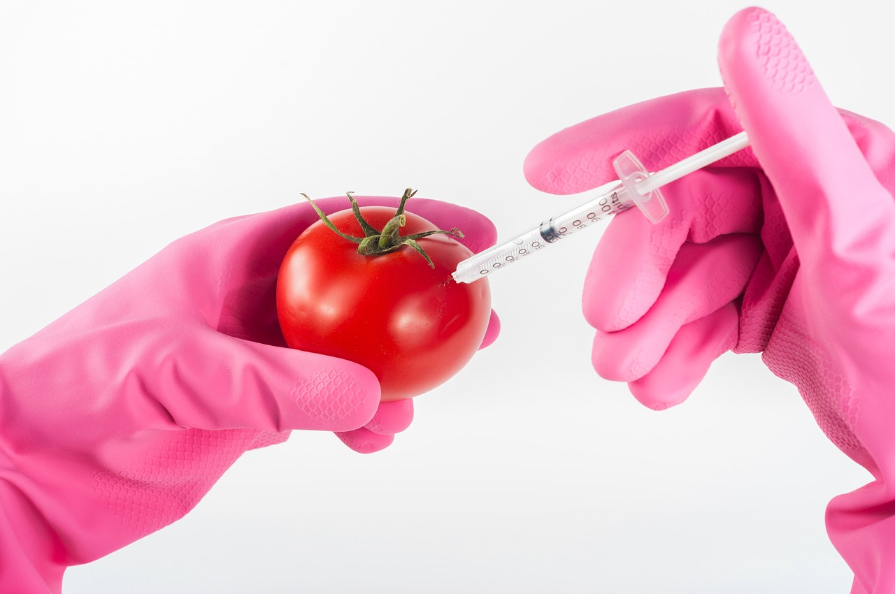 Fear of GMO